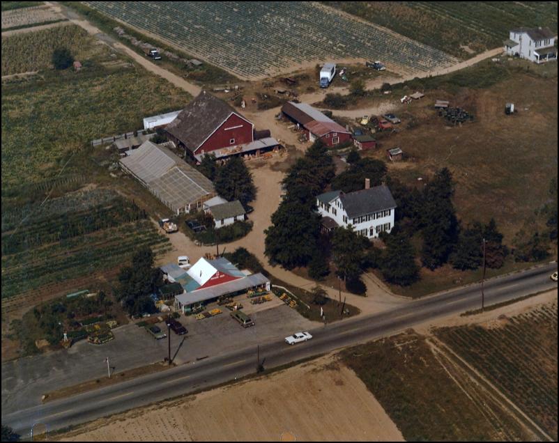 Springdale Farm Market The History Of Our Farm